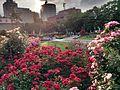 サンクンガーデン(Sunken Garden) - panoramio (1).jpg