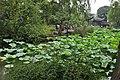 中国江苏省苏州市平江区 China Jiangsu Suzhou City, Province, Pingji - panoramio (14).jpg