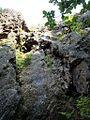 御岩山ゲレンデ 2012-05-27 - panoramio.jpg