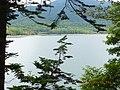 水没してて見られなかった^^ - panoramio.jpg