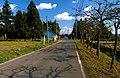 道 - panoramio.jpg