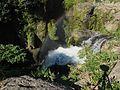 黄牛の滝その1 - panoramio.jpg
