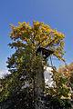 005-Batuliya Monastery Church-Bell.jpg