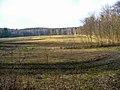 05-04-03-plagefenn-by-RalfR-52.jpg