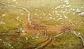 051907-010-Minneapolis1904.jpg