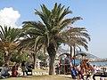 054 Espai sociocultural del passeig de la Ribera (Sitges), jardí i jocs d'infants.jpg