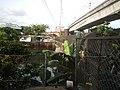 09899jfLandscape Quezon City Boundary Lambingan Bridge San Juan City River Aurora Boulevardfvf 11.jpg
