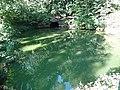 1. Ахеронтійське озеро (Мертве озеро), (парк «Софіївка»), Умань.JPG