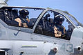 11th MEU and PHIBRON 5 execute visit board search and seizure 140616-M-CB493-038.jpg