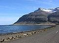 2005-05-28 18 02 26 Iceland-Dísarstaðir.JPG