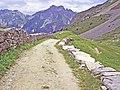 2011-07-06. GR 55, vallon de la Glière. Vanoise.jpg