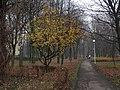 2012-Tychy-Park Solidarności-foto-Beata-Wąsowska 3.jpg