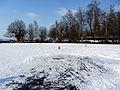 2012 'Seegfrörni' - Pfäffikersee - Strandbad Auslikon 2012-02-12 15-03-10 (SX230).JPG