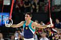 2015 European Artistic Gymnastics Championships - Rings - Artur Tovmasyan 06.jpg