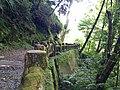 336, Taiwan, 桃園市復興區華陵里 - panoramio (73).jpg