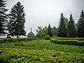 5311 Vodnitsi, Bulgaria - panoramio (6).jpg