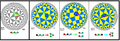 642 hyperbolic mirror removal examples.png