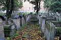6672vik Na Krakowskim Kazimierzu - cmentarz. Foto Barbara Maliszewska.jpg