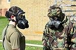AAC Phase 2 training MOD 45162245.jpg