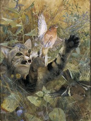 A Cat and a Chaffinch. Five animal studies in one frame, NM 2223-2227