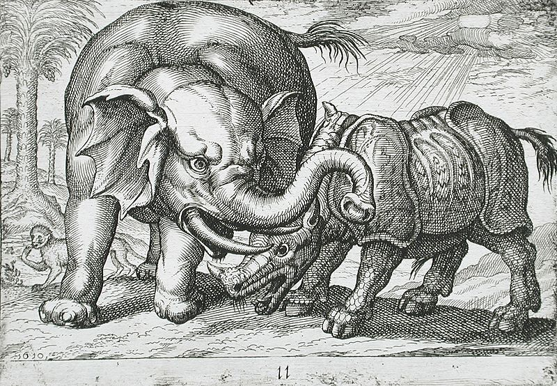 File:A Rhinoceros Fighting an Elephant LACMA 65.37.306.jpg