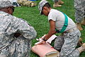 A U.S. Soldier with the 77th Sustainment Command applies a bandage to a mannequin during combat lifesaver training Aug. 6, 2013, at Joint Base McGuire-Dix-Lakehurst, N.J 130806-A-OL384-002.jpg