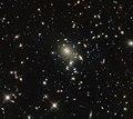 A bright find (50022175682).jpg