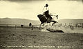 A bull riding cowboy holds tight as the bull lunges airborne.jpg