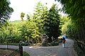 A fork in the road in the delightful little park in Huangzhou (35803222683).jpg