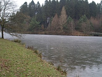 Forest of Dean - Lake at Mallards Pike, frozen during winter.