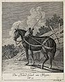A hand-horse with harness, blinkers and girth standing in a Wellcome V0021149ER.jpg