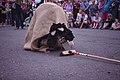 A hobby Horse at Sidmouth Folk Festival.jpg