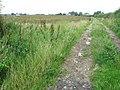 A poor crop^ - geograph.org.uk - 515669.jpg