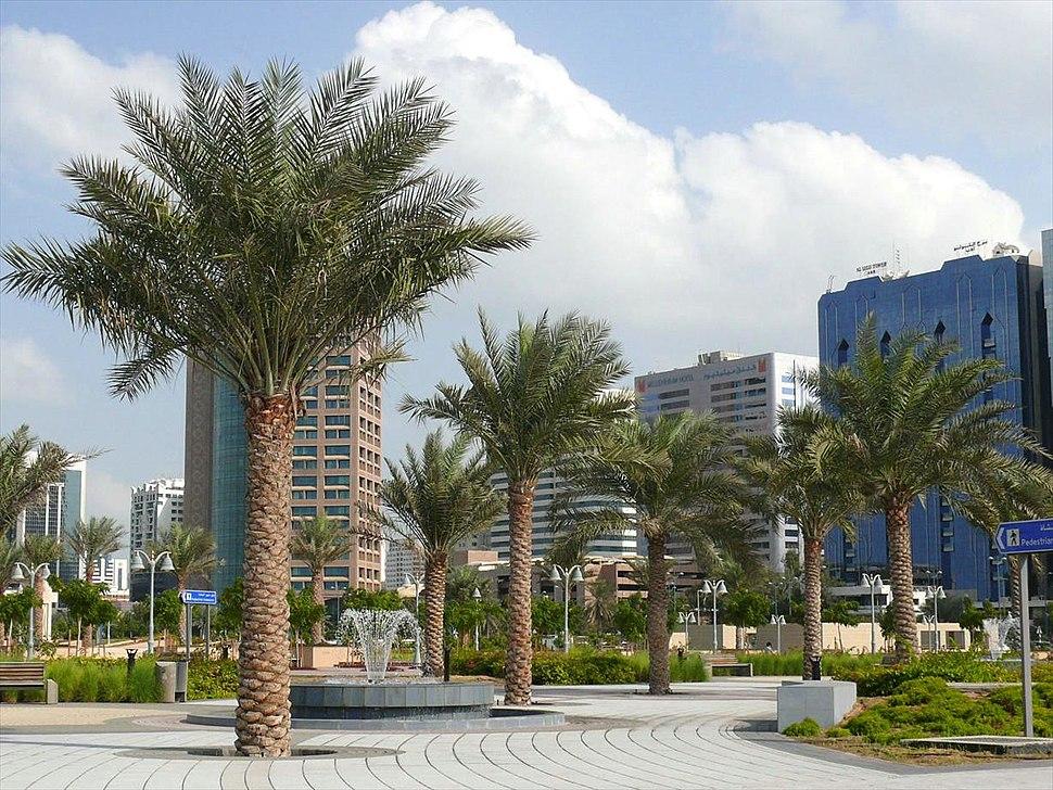 Abu Dhabi on 27 December 2007 Pict 13