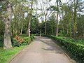 Access to Pinehurst South - geograph.org.uk - 2408013.jpg