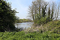 Across Hooks Marsh Lake at Fishers Green, Lee Valley, Waltham Abbey, Essex, England 03.jpg