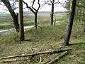 Across The John Bunyan Trail - geograph.org.uk - 400451.jpg