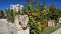 Adıyaman, Adıyaman Merkez-Adıyaman Province, Turkey - panoramio.jpg