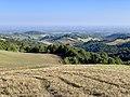 Agriturismo Cavazzone, Viano, Italy, 2019 - views of the countryside around 01.jpg