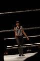 Aksana WWE.jpg