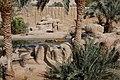 Al Ain Zoo, tiger zone - panoramio (1).jpg