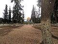 Alaqsa mosque0001 17.jpg