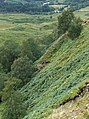 Allt Coire a' Mhusgain - geograph.org.uk - 238899.jpg