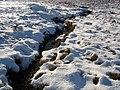 Allt Larach Tigh Thionail - geograph.org.uk - 334818.jpg