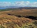 Allt nan Suidheag - geograph.org.uk - 1539245.jpg
