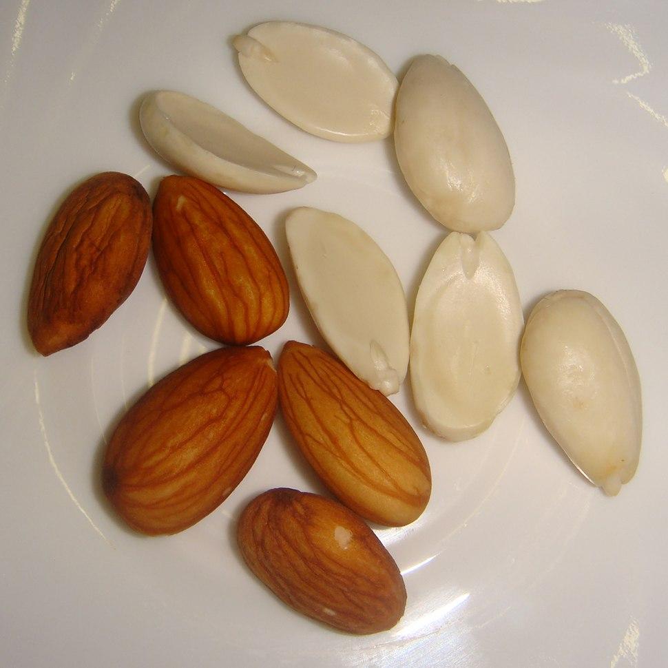 Almond-Badam-001