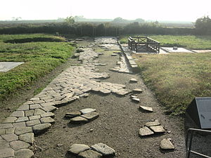 Altinum - Remains of the Roman decumanus.