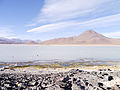 Altiplano, Bolivien (11214207786).jpg