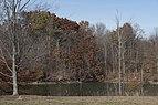 Alum Creek State Park in November 1.jpg