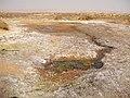 Alxa Zuoqi, Alxa, Inner Mongolia, China - panoramio (32).jpg
